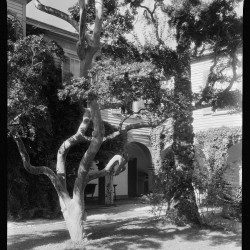 View of Second Story from Garden